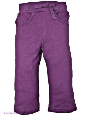 Брюки Baby Club. Цвет: фиолетовый (осн.)
