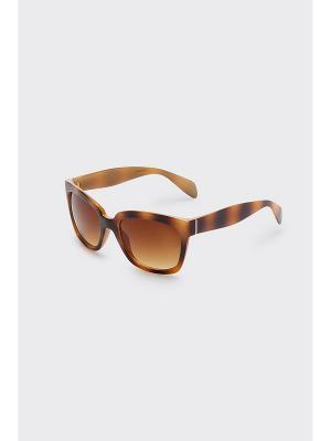 Очки солнцезащитные Concept Club. Цвет: коричневый