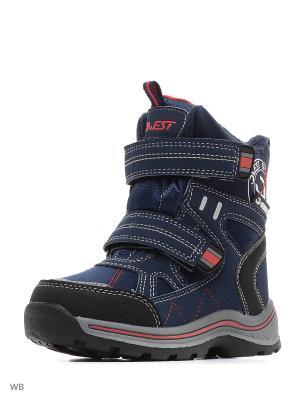 Ботинки QWEST. Цвет: синий