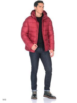 Куртка SNOWIMAGE. Цвет: бордовый