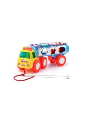 Каталка- машинка на веревочке с металлофоном. Tongde. Цвет: красный, желтый, белый, голубой