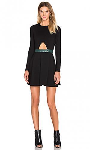 Облегающее платье с расклешенной юбкой night sky NBD. Цвет: черный