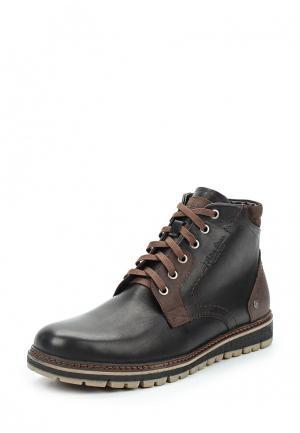 Ботинки Nine Lines. Цвет: коричневый