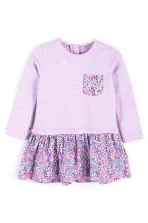 Платье Coccodrillo. Цвет: фиолетовый