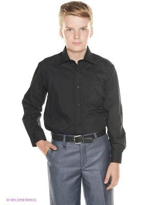 Рубашка Cascatto. Цвет: черный