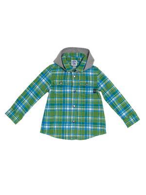 Рубашка CHICCO. Цвет: зеленый