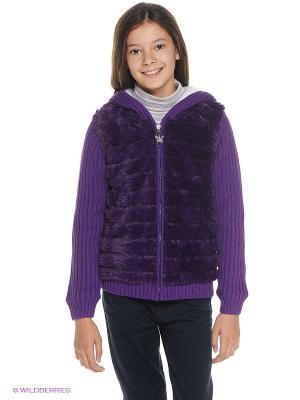 Куртка PELICAN. Цвет: фиолетовый