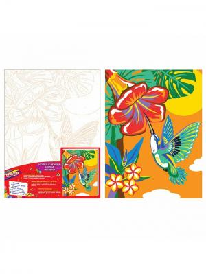 Роспись холста по номерам Колибри КРЕАТТО. Цвет: оранжевый, голубой, зеленый