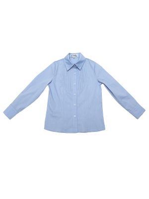 Блузка CIAO KIDS collection. Цвет: голубой