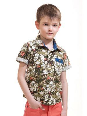 Рубашка Vilatte. Цвет: хаки