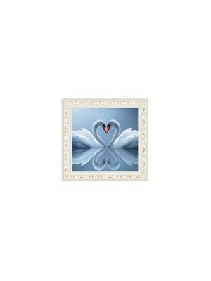 Лебединая пара В850 Картина в раме 15х18 PROFFI. Цвет: белый, серый