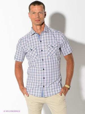 Рубашка Maestro. Цвет: сиреневый, синий