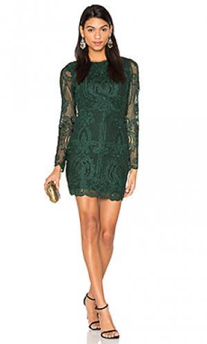 Кружевное платье с открытой спиной Lavish Alice. Цвет: зеленый