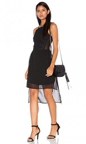 Мини платье dashka LA Made. Цвет: черный