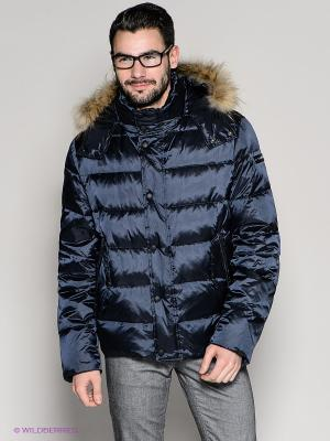 Куртка 18CRR81 CERRUTI. Цвет: темно-синий