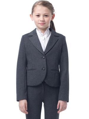 Пиджак Cleverly. Цвет: серый