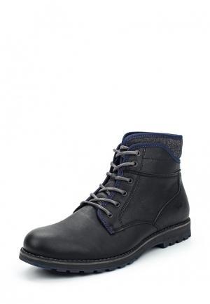 Ботинки Wojas. Цвет: черный
