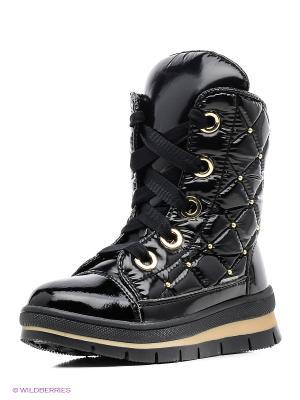 Ботинки Jog Dog. Цвет: черный, золотистый