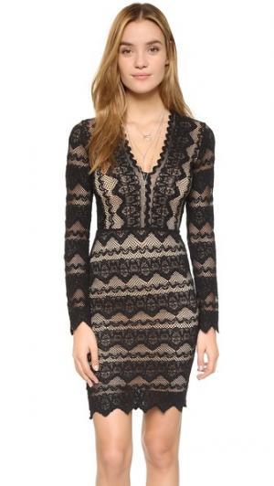 Кружевное платье Sierra с глубоким V-образным вырезом Nightcap x Carisa Rene. Цвет: черный/телесный