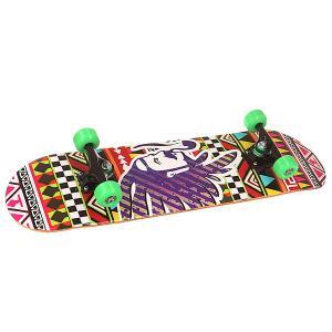 Скейтборд в сборе  Stalin Injun Multi 32 X 8.125 (20.6 см) Turbo-FB. Цвет: мультиколор