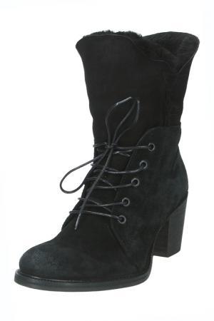 Ботинки Gant. Цвет: черный