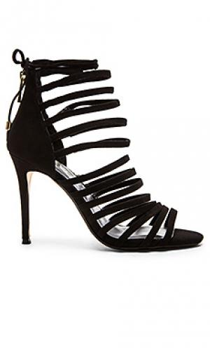 Туфли на каблуке brielle RAYE. Цвет: черный