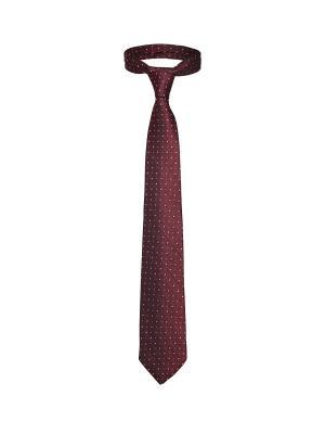 Классический галстук Азартный Лас Вегас в горох и вертикальную полоску Signature A.P.. Цвет: бордовый, розовый, черный