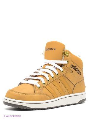Кроссовки NEO HOOPS PREMIUM Adidas. Цвет: коричневый