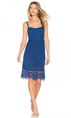 Платье cassia BB Dakota. Цвет: синий