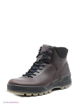 Ботинки ECCO. Цвет: коричневый, черный