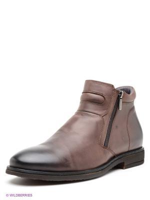 Ботинки Companion. Цвет: коричневый