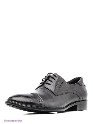 Туфли Dino Ricci. Цвет: серый
