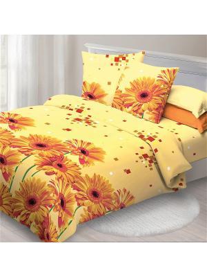 Комплект постельного белья 1.5 Спал Спалыч рис.3805-1 Герберы. Цвет: оранжевый