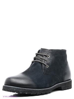 Ботинки Dino Ricci. Цвет: синий