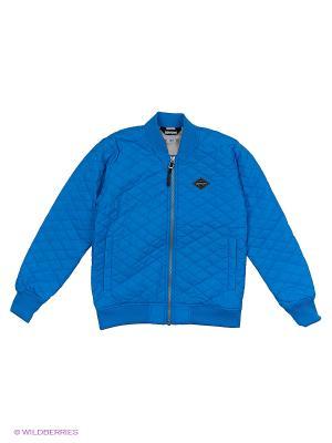 Куртка NATE DIDRIKSONS. Цвет: лазурный
