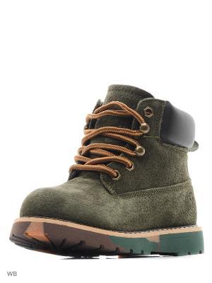 Ботинки Vitacci. Цвет: зеленый