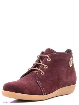 Ботинки Roccol. Цвет: бордовый