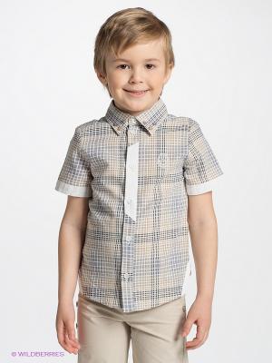Рубашка CHOUPETTE. Цвет: бежевый, черный, серый