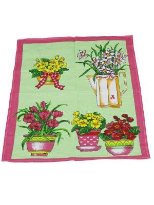 Набор полотенец Кухня 2шт Римейн. Цвет: салатовый, розовый