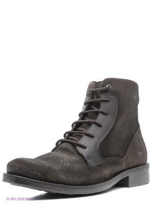 Ботинки JUST COUTURE. Цвет: коричневый, синий
