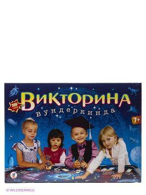 Настольная игра Викторина вундеркинда Дрофа-Медиа. Цвет: синий