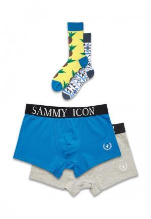 Комплект трусов и носков Sammy Icon. Цвет: разноцветный