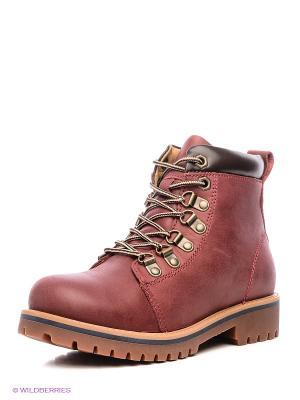 Ботинки Francesco Donni. Цвет: бордовый