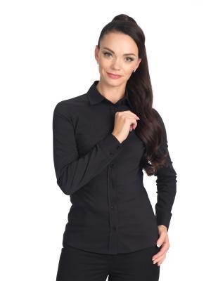 Блузка BLAUZ. Цвет: черный