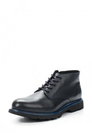 Ботинки El Tempo. Цвет: синий