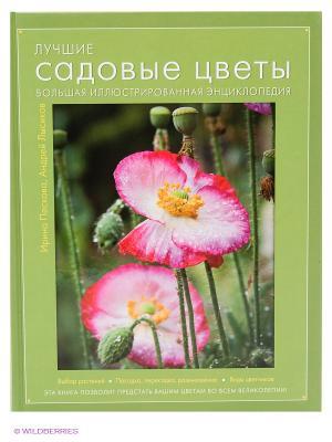 Лучшие садовые цветы. Большая иллюстрированная энциклопедия Эксмо. Цвет: зеленый