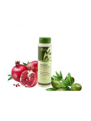 Шампунь для окрашенных волос с экстрактом оливкового масла и граната Rizes Crete. Цвет: белый