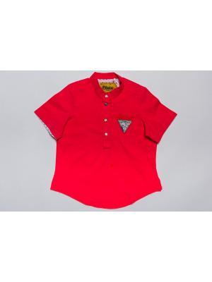 Рубашка Pilota. Цвет: коралловый