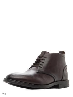 Ботинки Strellson. Цвет: коричневый