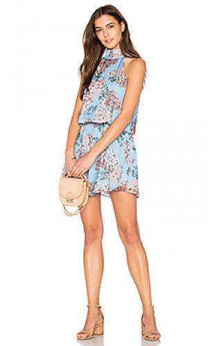 Платье холтер rudi Line & Dot. Цвет: синий
